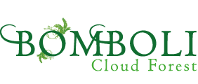 Bomboli Cloud Forest Logo